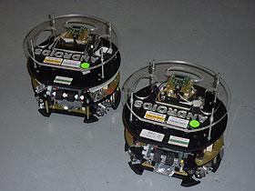 2012_rcj_hohenems_team_androids_roboter.jpg